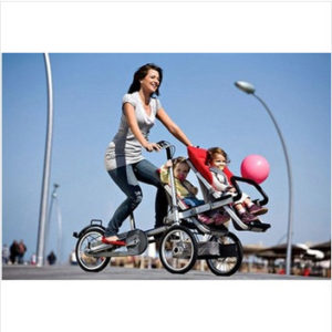 16inch-Aluminium-Alloy-Carrier-font-b-Bicycle-b-font-carrinho-baby-car-Double-baby-seats-3.jpg