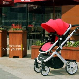 font-b-Five-b-font-Color-Available-for-Your-Choice-font-b-Strollers-b-font.jpg